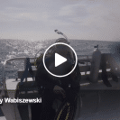 Diver Captures Video Of His Encounter With A Great White Shark