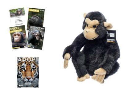 Adopt a Chimp